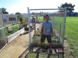 proud of garden